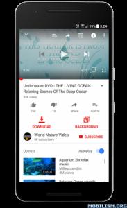 OGYouTube Latest APK 4 2 Version Free Download (Updated 19-Dec-2018)